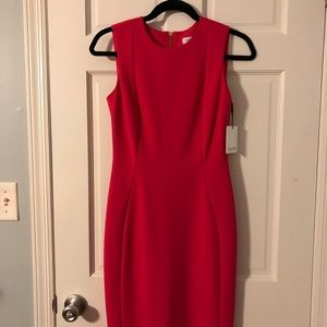 Calvin Klein Scuba Dress